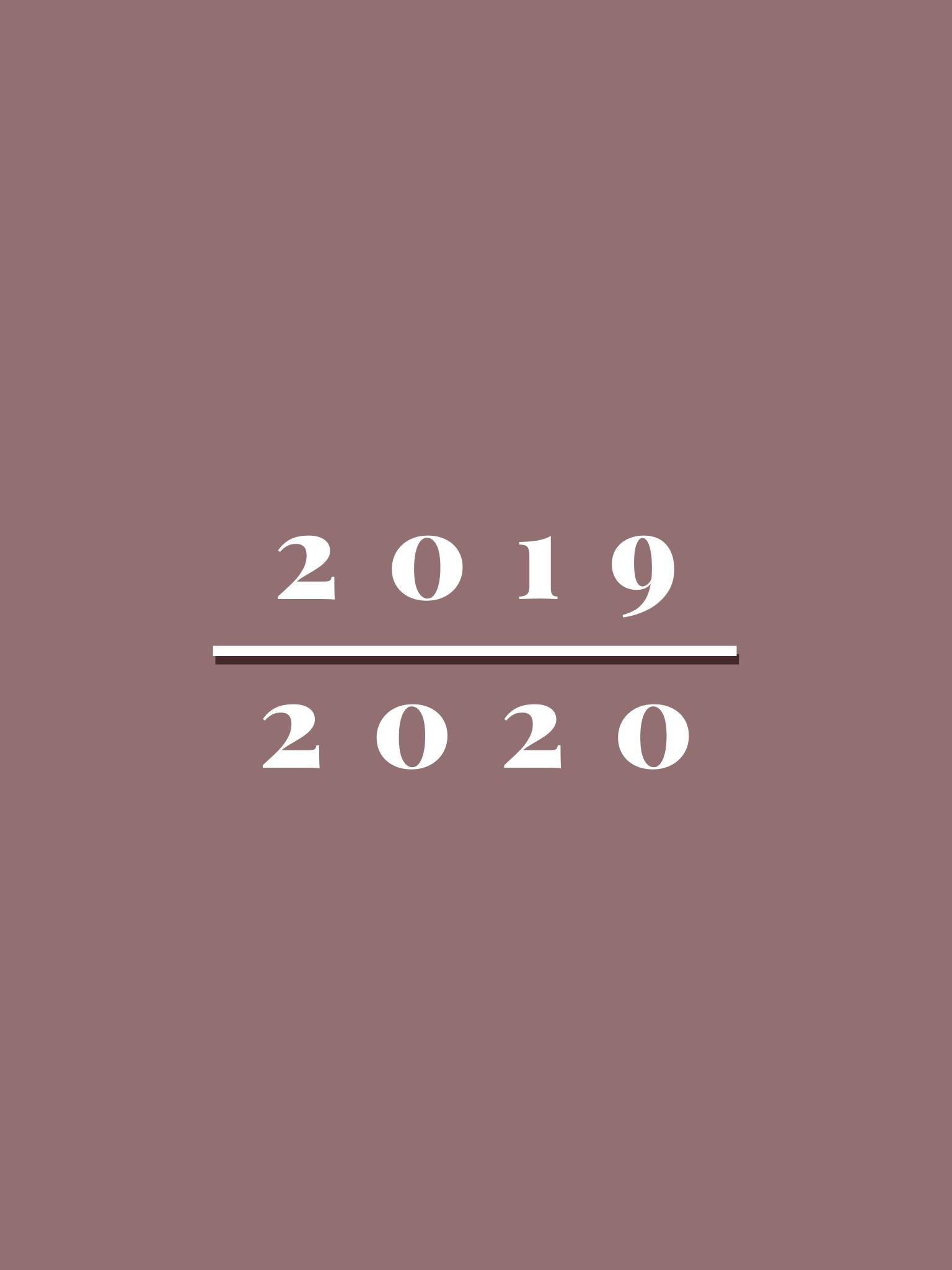 osvrt na prethodnu godinu i novogodišnje odluke za narednu